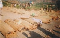 Těla obětí mimosoudních poprav v Burundi