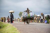 Nesnáze násilně vysídlených v Africe