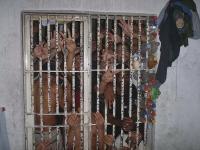 Podmínky ve vazebních věznicích v Brazílii